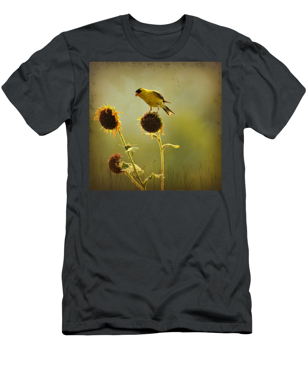 Finch Men's T-Shirt (Athletic Fit) featuring the photograph Finch 1 by Todd Hostetter