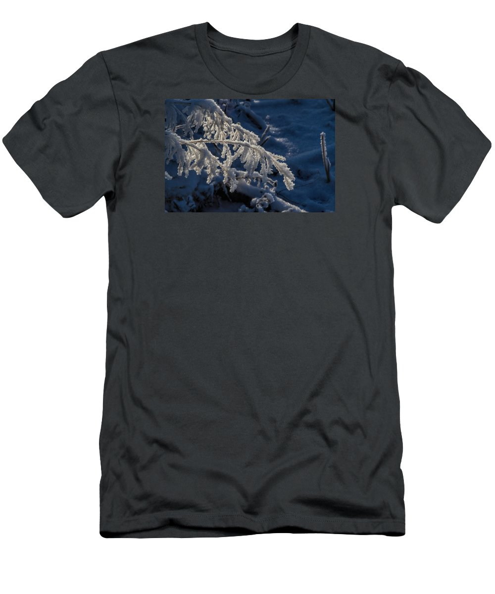 Frost T-Shirt featuring the photograph First Light by Alana Thrower