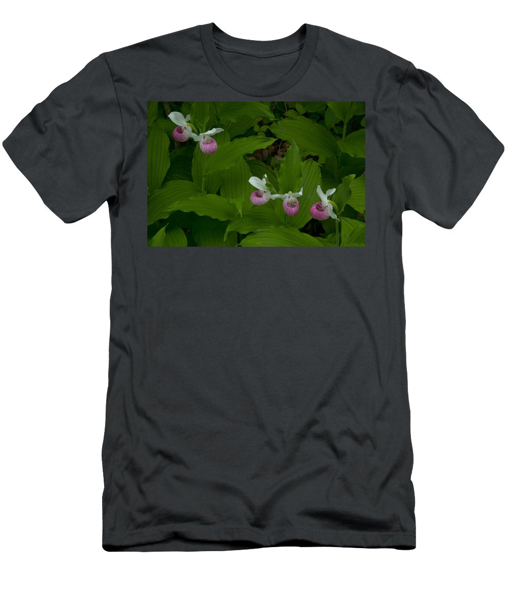 Wildflowers Men's T-Shirt (Athletic Fit) featuring the photograph Five Slippers by Irwin Barrett