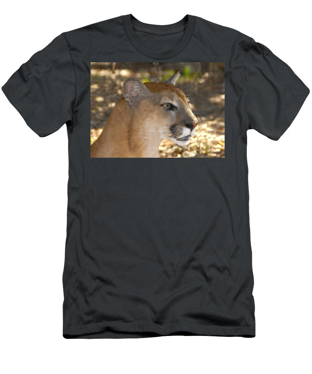 Florida Men's T-Shirt (Athletic Fit) featuring the photograph Florida Panther by David Lee Thompson
