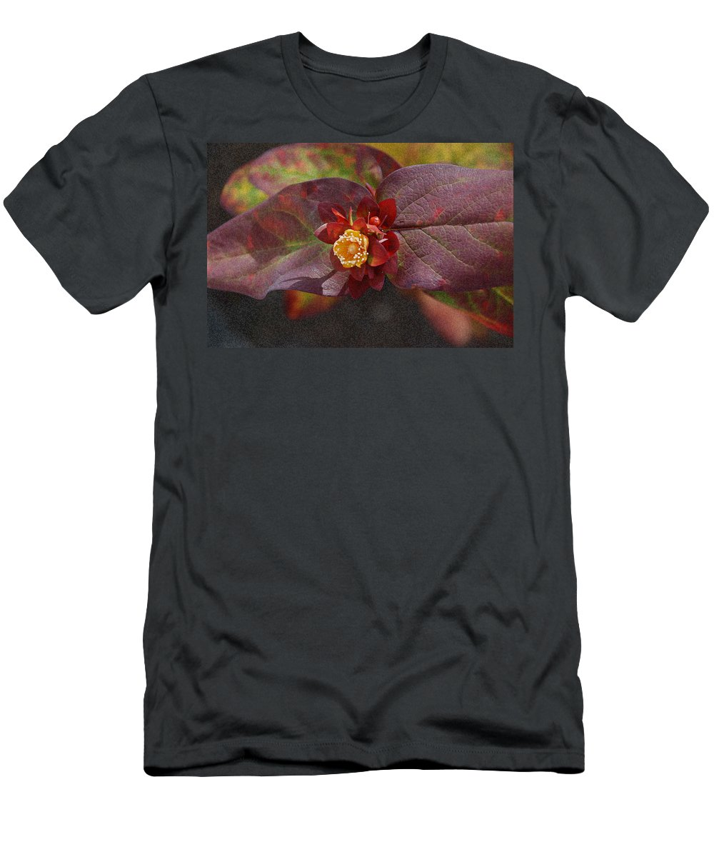 Flower Men's T-Shirt (Athletic Fit) featuring the photograph Flower Leaves by Carol Eliassen
