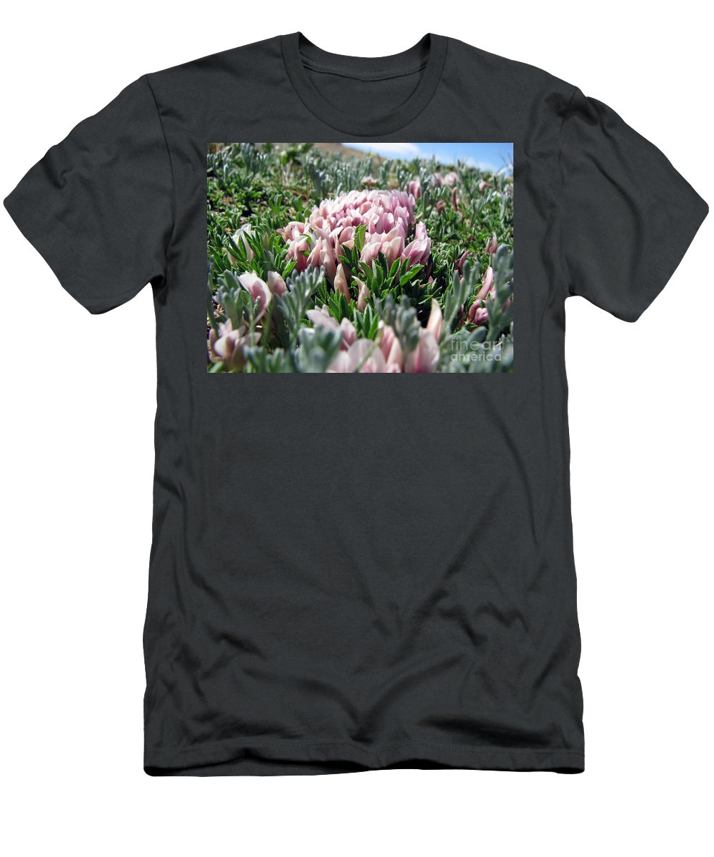 Flowers Men's T-Shirt (Athletic Fit) featuring the photograph Flowers In The Alpine Tundra by Amanda Barcon