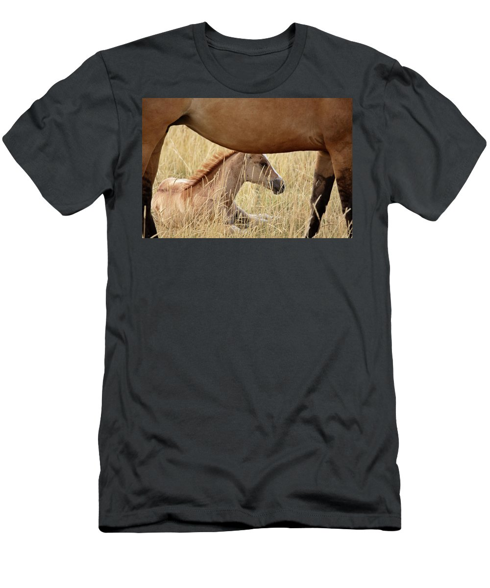Horse Men's T-Shirt (Athletic Fit) featuring the digital art Foal And Mare In A Saskatchewan Pasture by Mark Duffy
