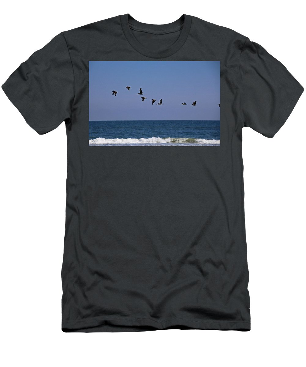 Pelican Men's T-Shirt (Athletic Fit) featuring the photograph Follow The Leader by Michiale Schneider