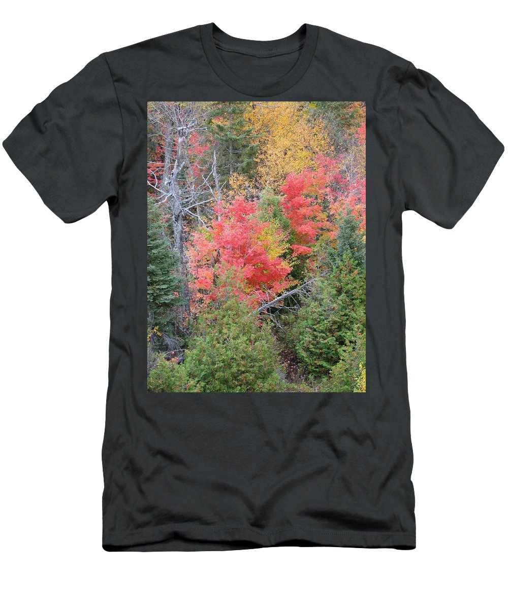 Fall Men's T-Shirt (Athletic Fit) featuring the photograph Forest Fire by Kelly Mezzapelle