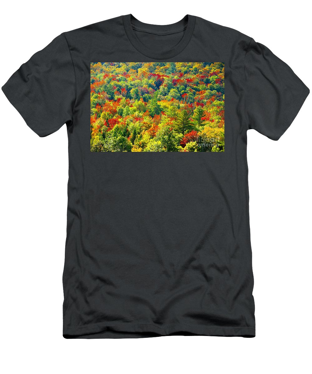 Forest Men's T-Shirt (Athletic Fit) featuring the photograph Forest Of Color by David Lee Thompson