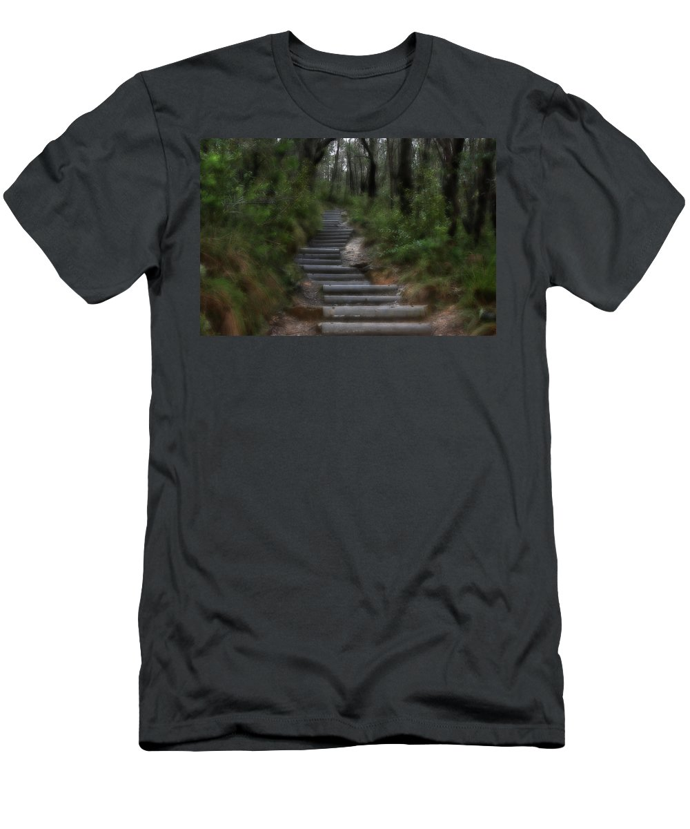 Forest Men's T-Shirt (Athletic Fit) featuring the photograph Forest Pathway by Douglas Barnard
