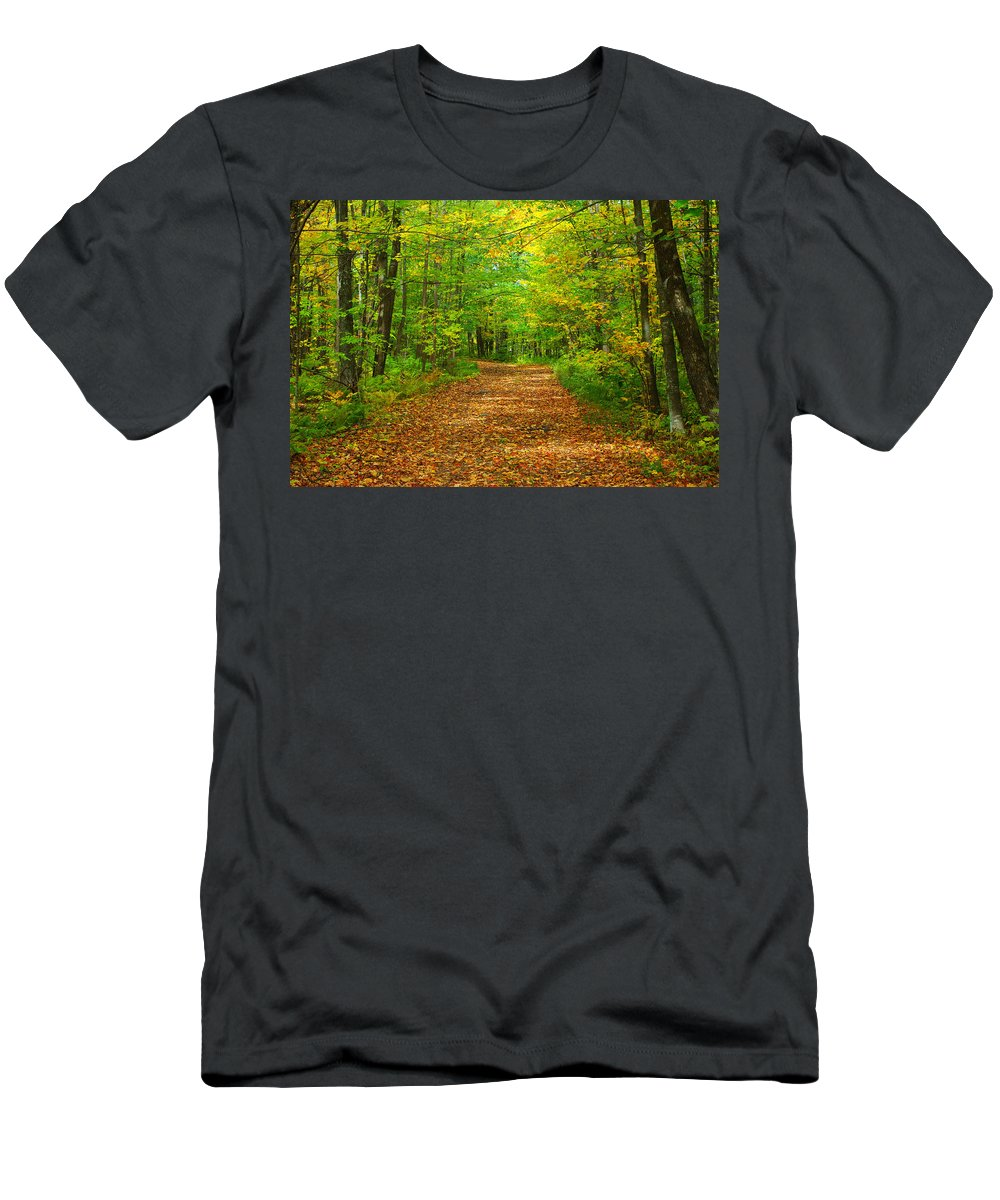 Fall Leaves Men's T-Shirt (Athletic Fit) featuring the photograph Forest Road In The Fall by Alice Markham