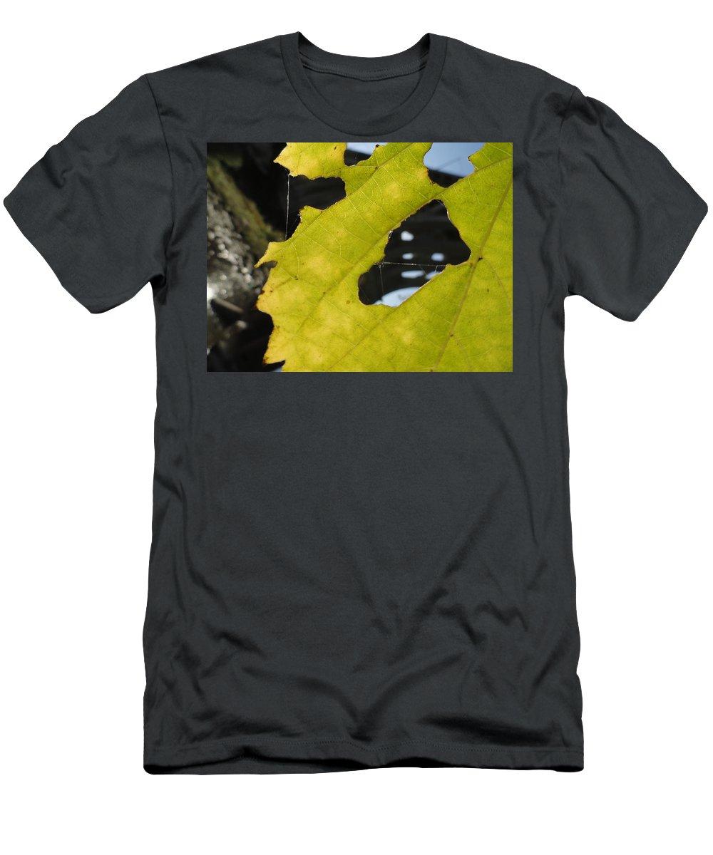 Landscape Men's T-Shirt (Athletic Fit) featuring the photograph Framed Bridged by Trish Hale