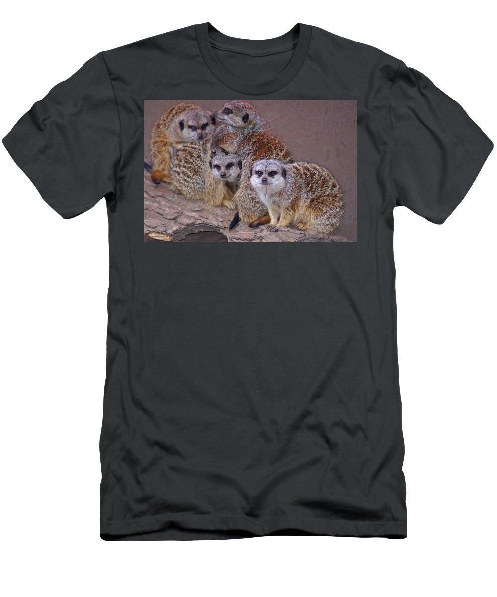 Mer Cats Men's T-Shirt (Athletic Fit) featuring the photograph Freezing Meer Cats by Heather Coen