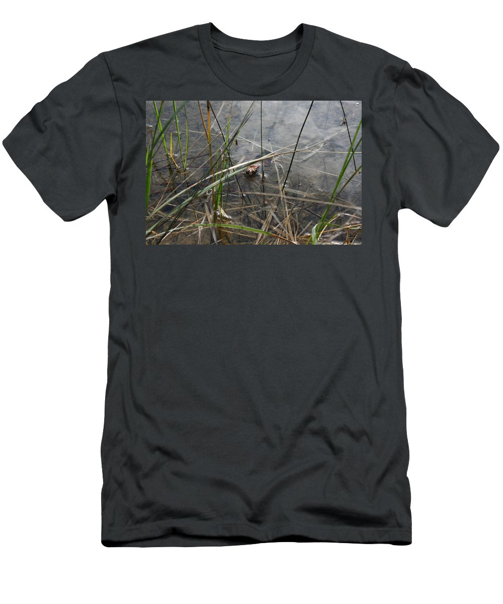 Frog Water Mother Nature Wild Reptile Eyes Lake Marsh Men's T-Shirt (Athletic Fit) featuring the photograph Frog Home by Andrea Lawrence