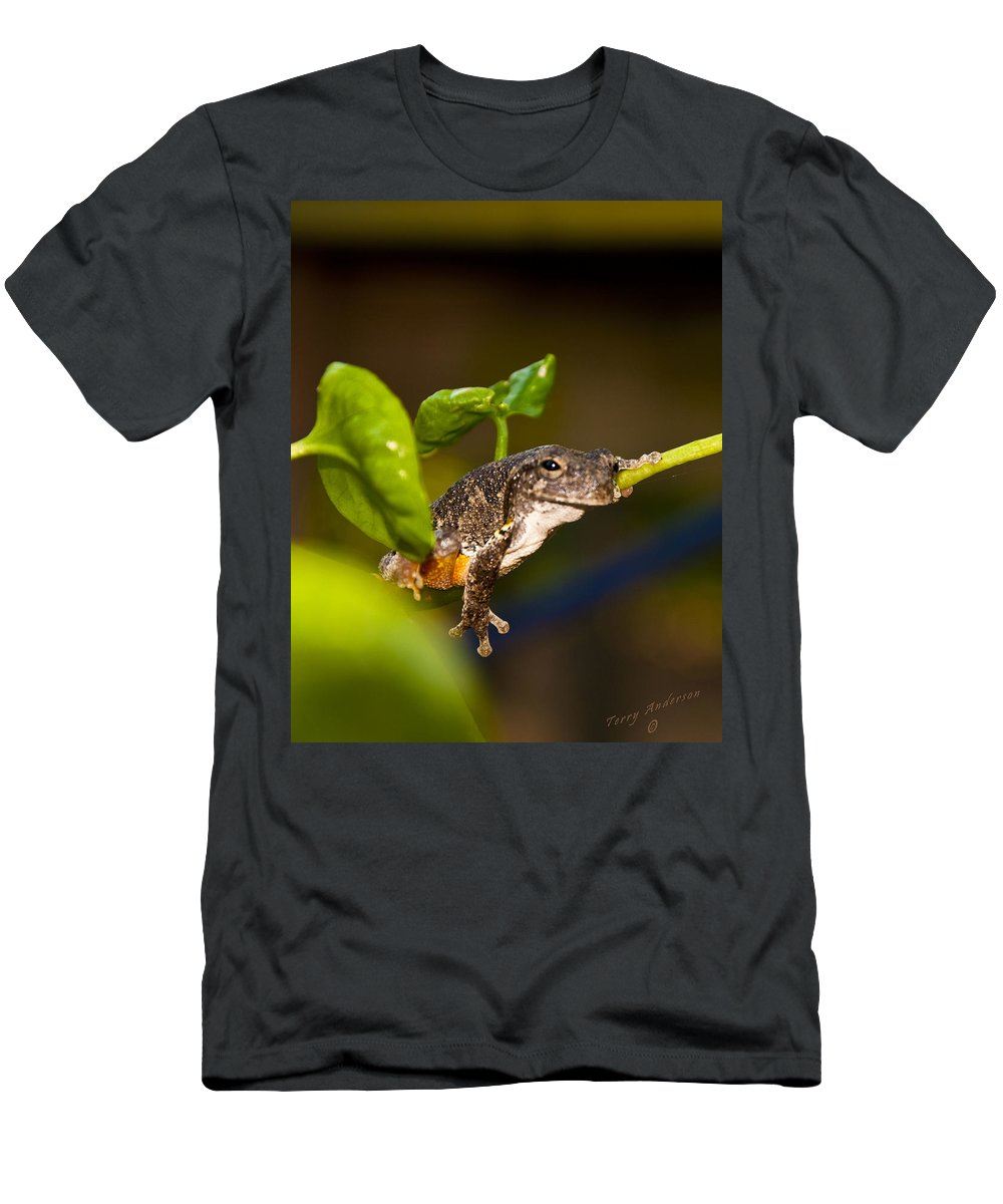 Frog Men's T-Shirt (Athletic Fit) featuring the photograph Frogs Life by Terry Anderson