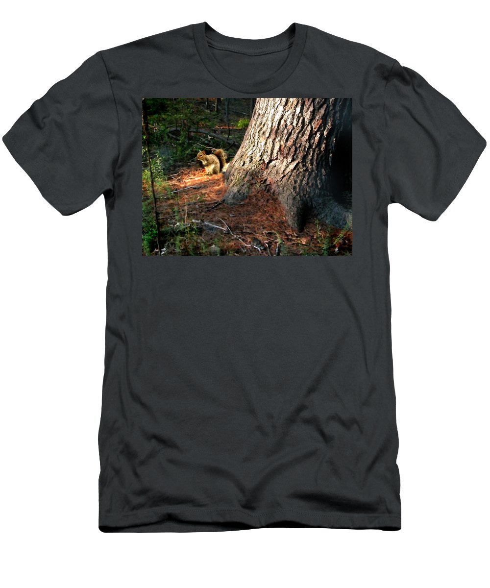 Squirrel Men's T-Shirt (Athletic Fit) featuring the painting Furry Neighbor by Paul Sachtleben