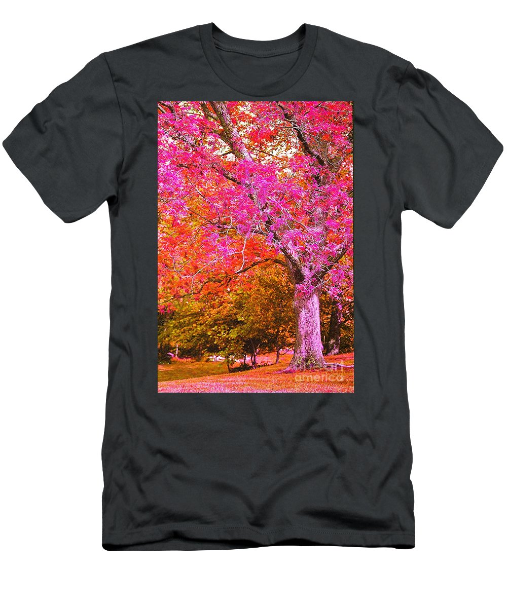 Fuschia T-Shirt featuring the photograph Fuschia Tree by Nadine Rippelmeyer