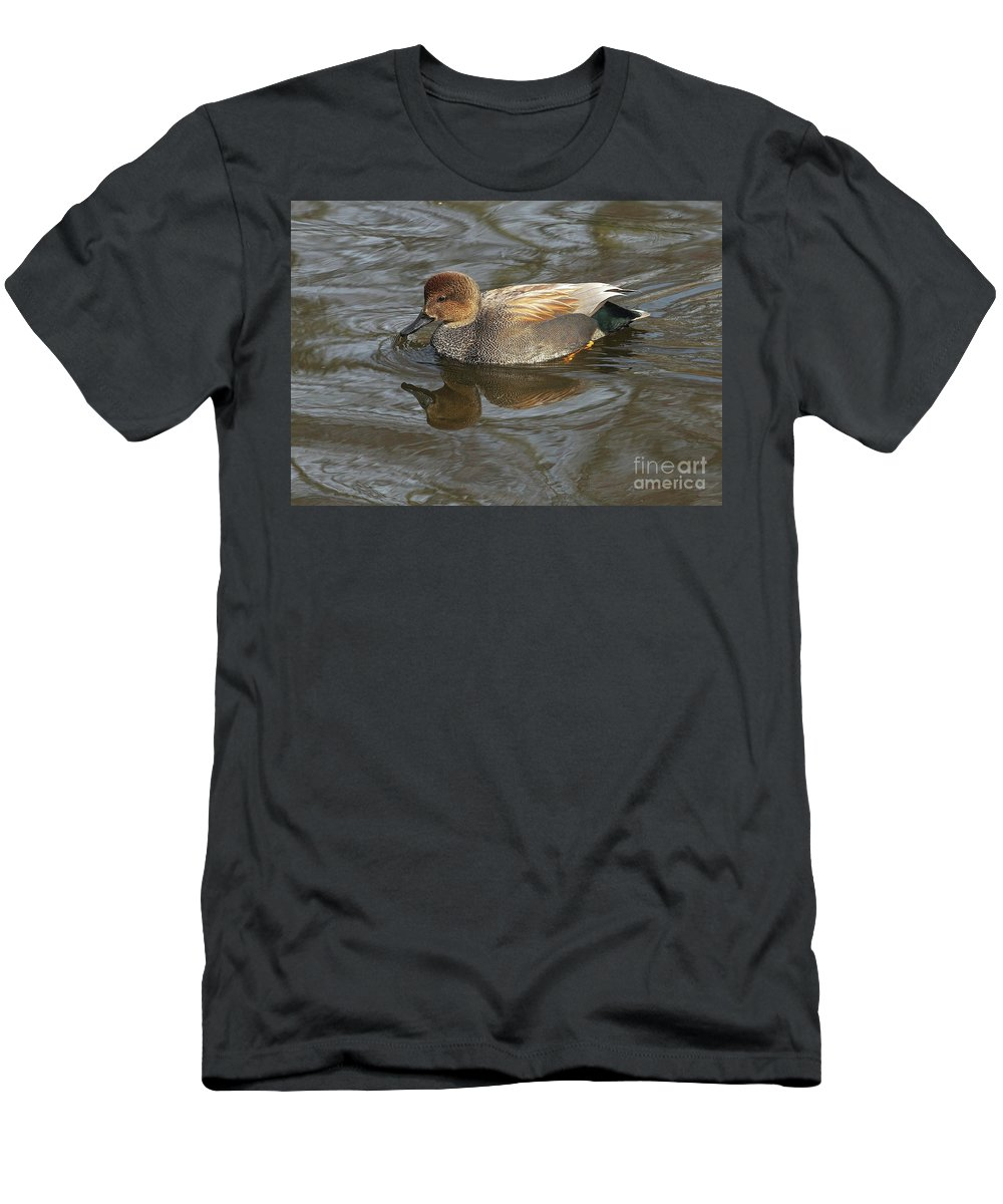 Gadwall Men's T-Shirt (Athletic Fit) featuring the photograph Gadwall by Sharon Talson