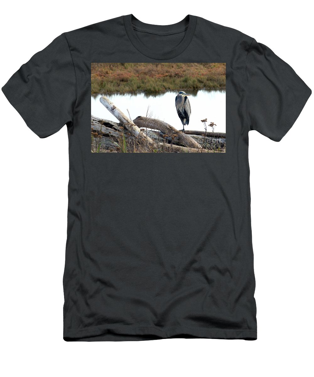 Great Blue Heron Men's T-Shirt (Athletic Fit) featuring the photograph Gbh On Log by Sharon Talson
