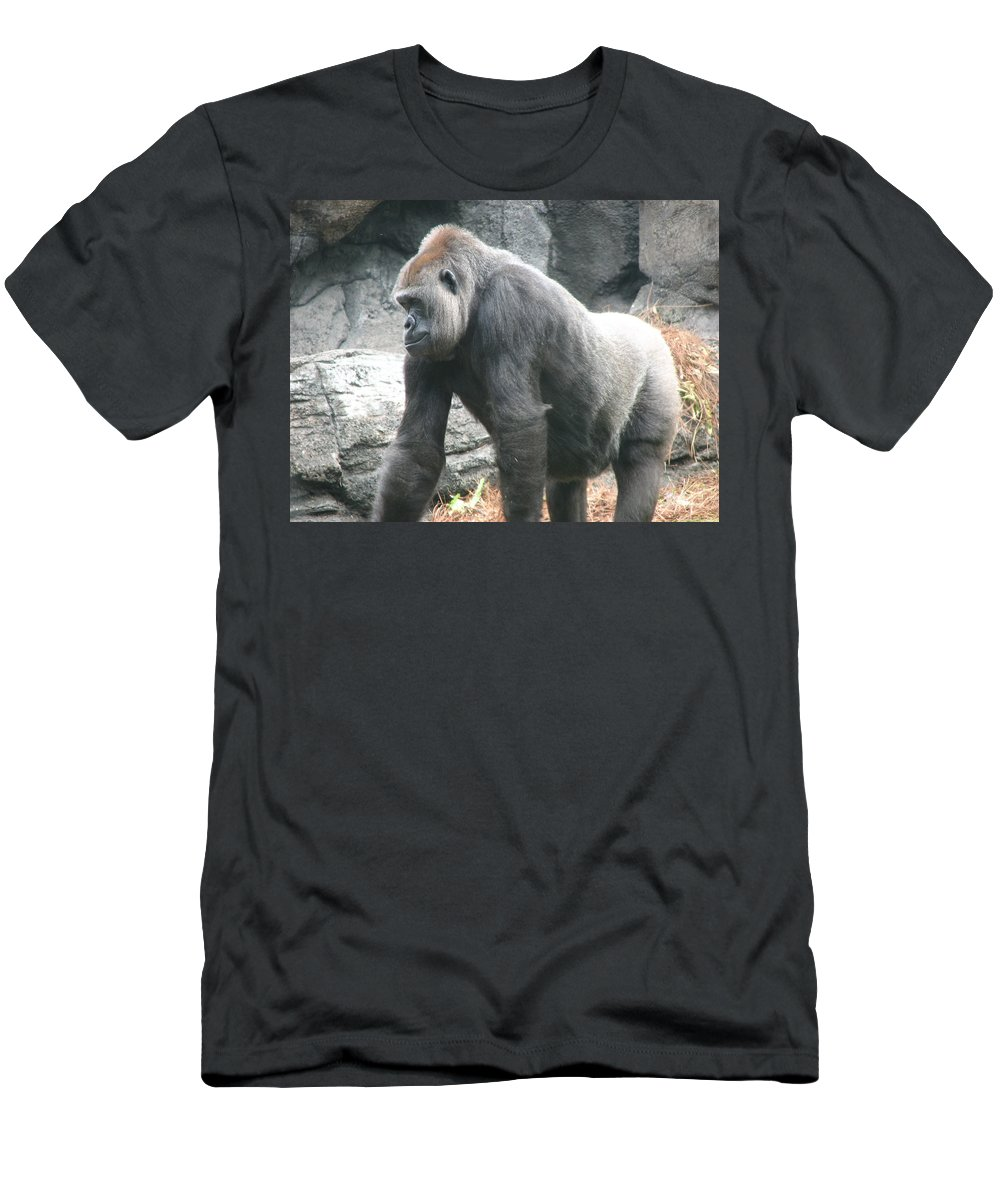 Gorilla T-Shirt featuring the photograph Gentle Giant by Creative Solutions RipdNTorn