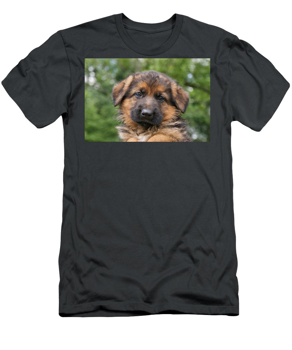 Dogs Men's T-Shirt (Athletic Fit) featuring the photograph German Shepherd Puppy II by Sandy Keeton
