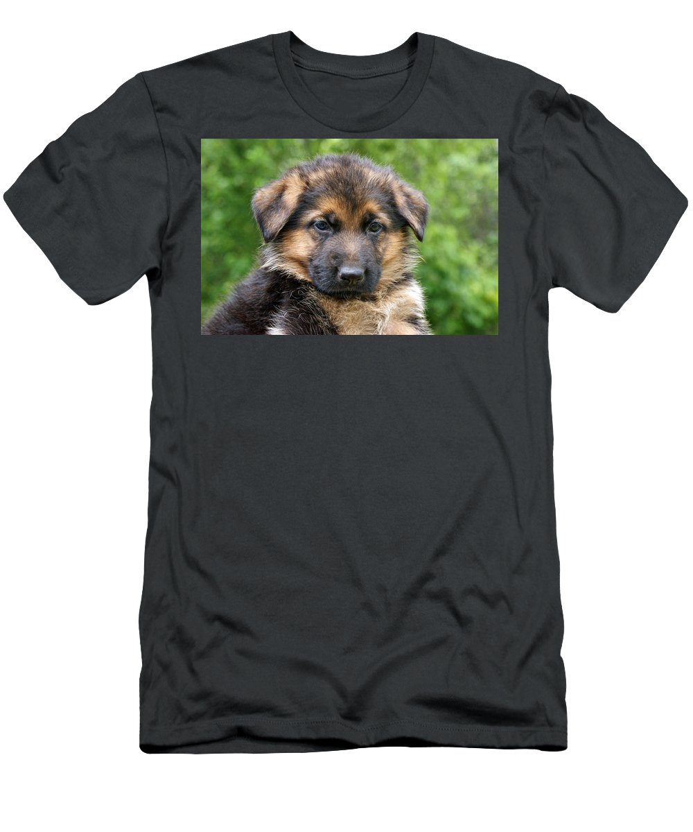 German Shepherd Men's T-Shirt (Athletic Fit) featuring the photograph German Shepherd Puppy by Sandy Keeton
