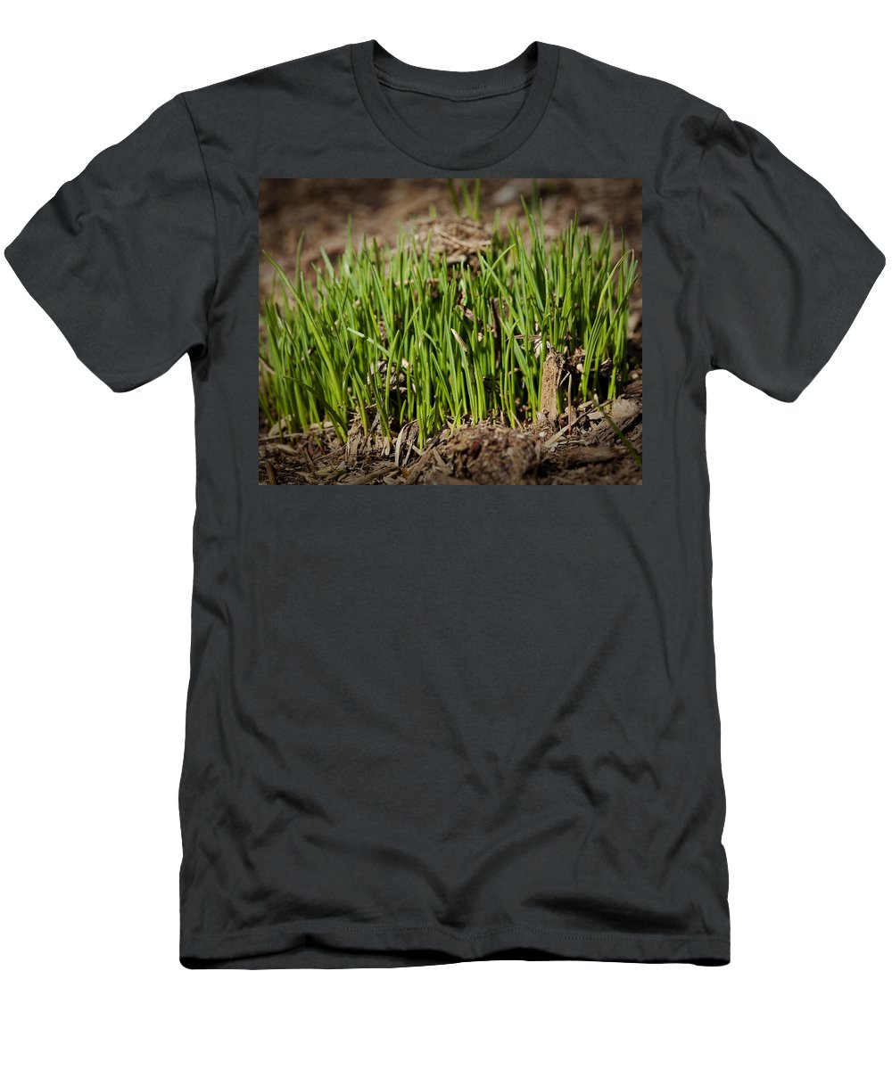 Grass Men's T-Shirt (Athletic Fit) featuring the photograph Germination by Kelley King
