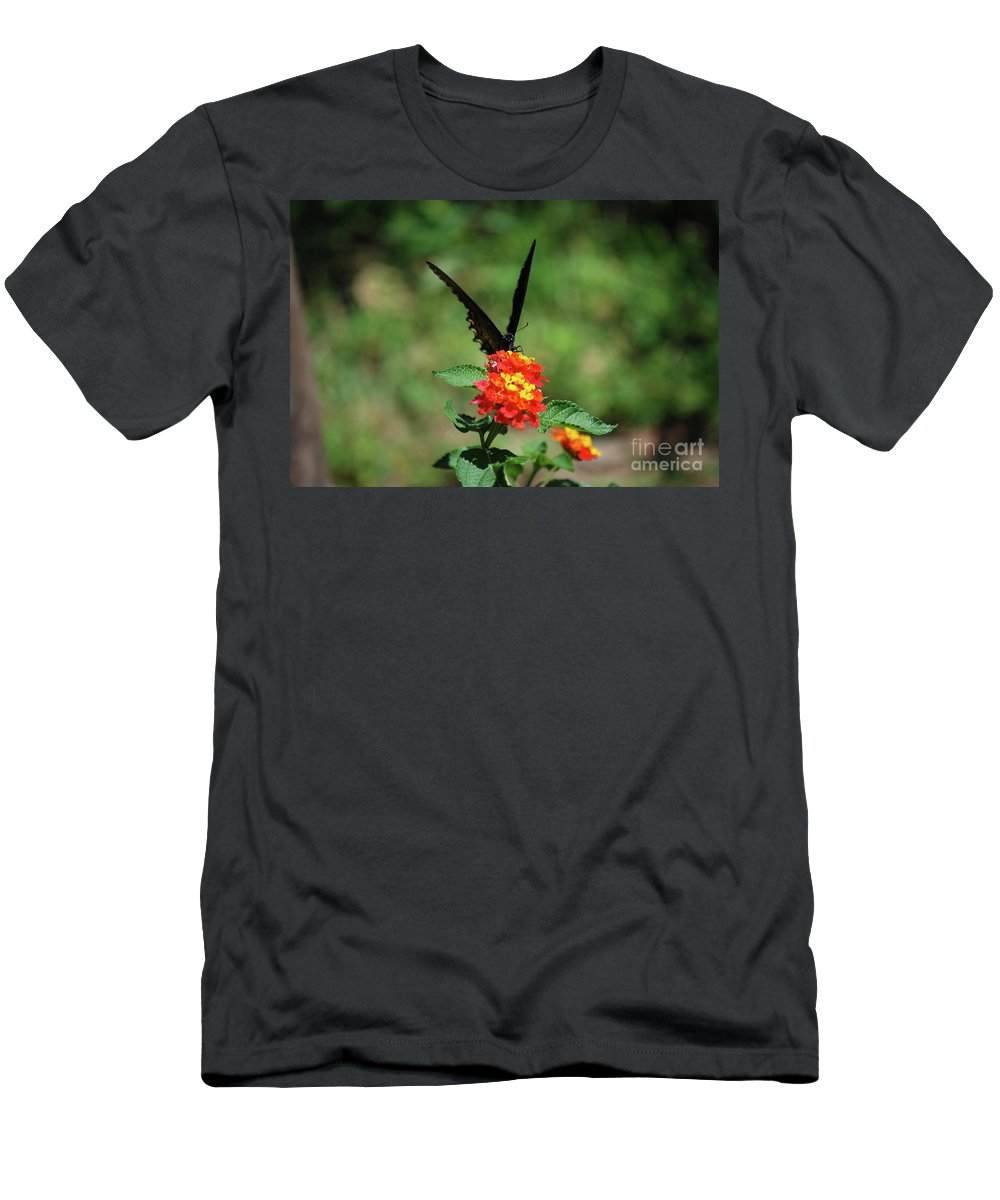 Swallowtail Men's T-Shirt (Athletic Fit) featuring the photograph Give Me A V by Lori Tambakis