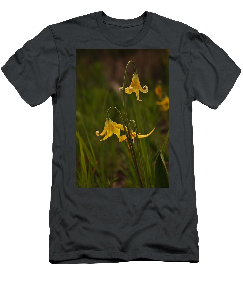 Yellowstone National Park T-Shirt featuring the photograph Glacier Lilly by Frank Madia