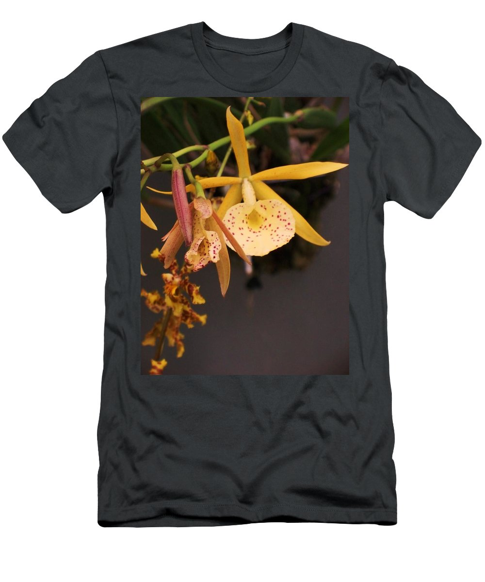 Gold Men's T-Shirt (Athletic Fit) featuring the photograph Gold Yellow Orchid by Eric Schiabor