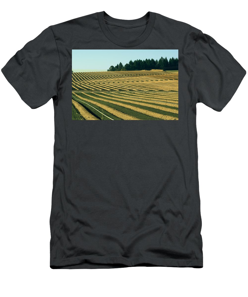 Plow Men's T-Shirt (Athletic Fit) featuring the photograph Golden Green by Sara Stevenson