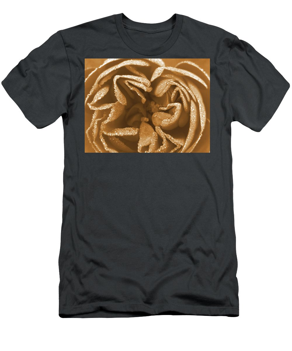 Rose Men's T-Shirt (Athletic Fit) featuring the photograph Golden Rose by Amy Fose