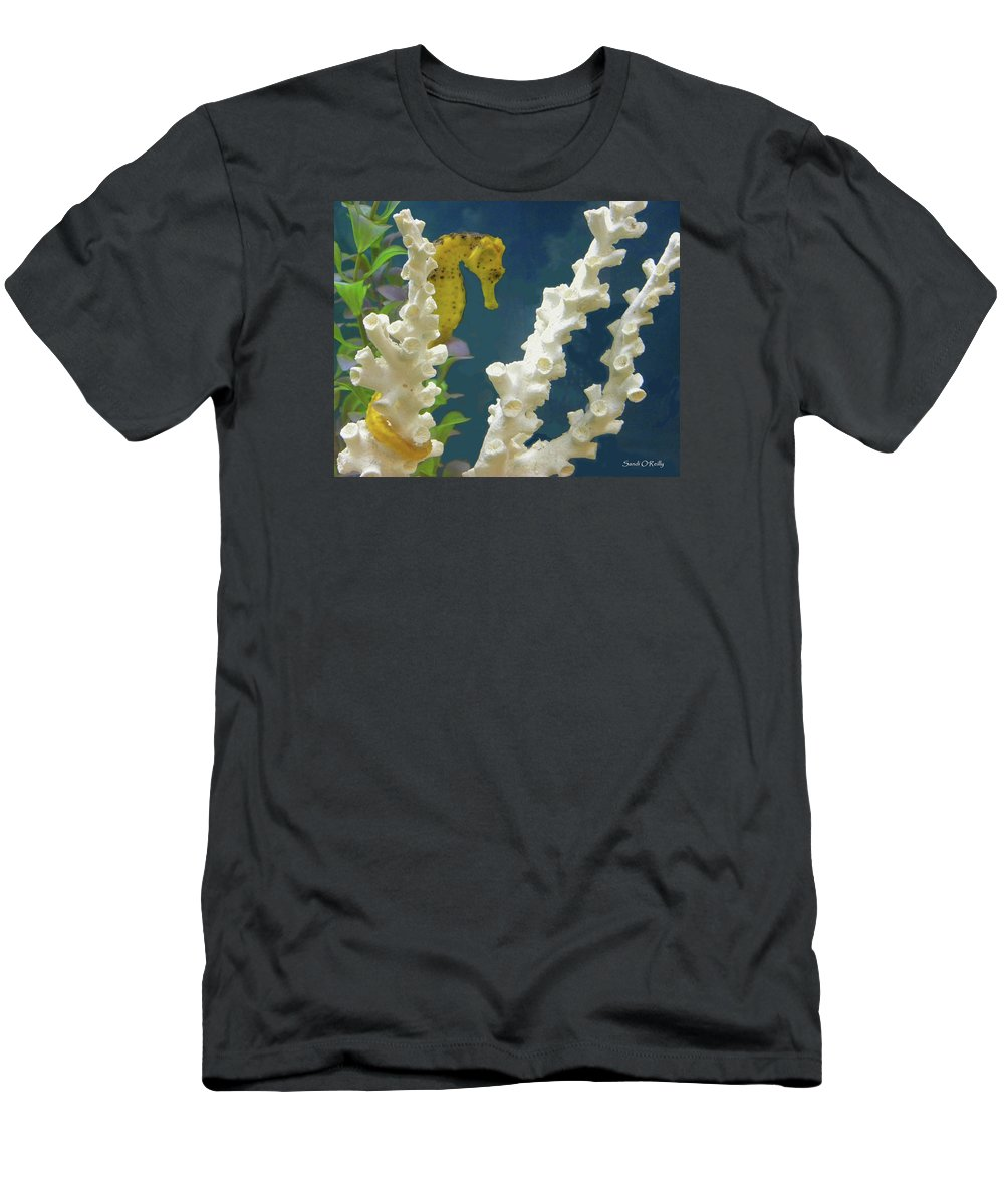 Golden Seahorse Men's T-Shirt (Athletic Fit) featuring the photograph Golden Seahorse by Sandi OReilly
