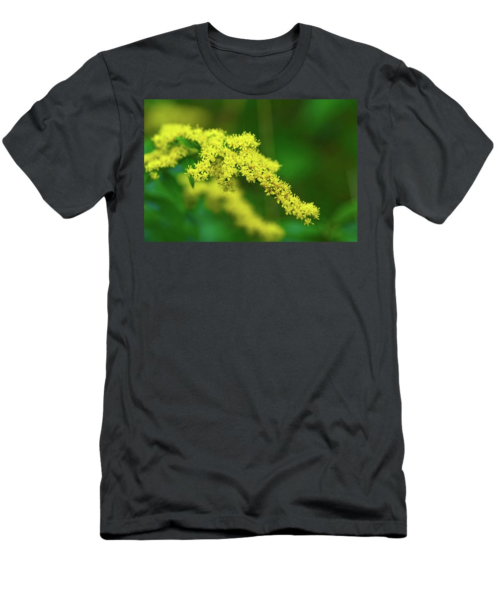Goldenrod Men's T-Shirt (Athletic Fit) featuring the photograph Goldenrod by Paul Mangold