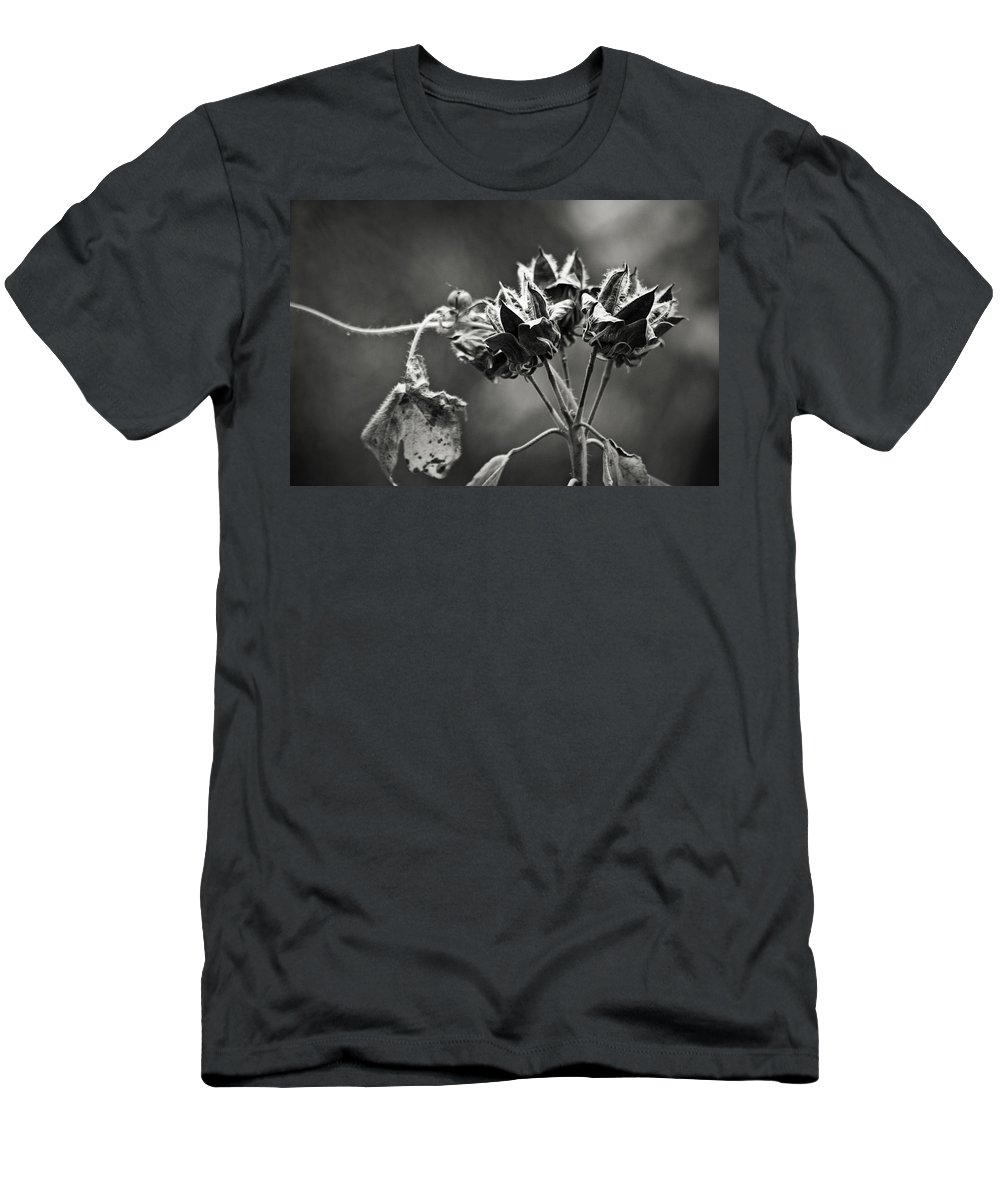 Flower Men's T-Shirt (Athletic Fit) featuring the photograph Gone To Seed Hibiscus by Teresa Mucha