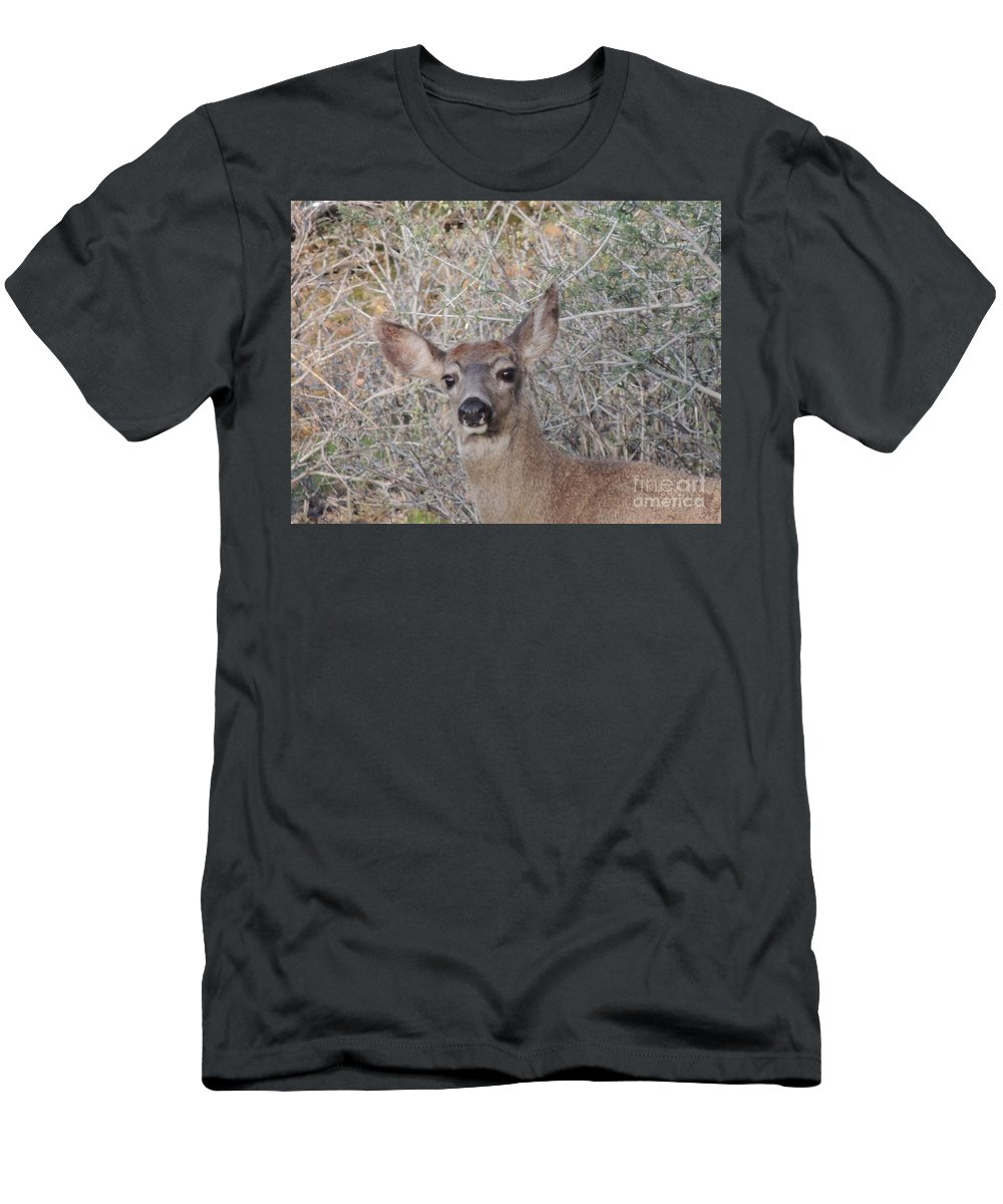 Wildlife Men's T-Shirt (Athletic Fit) featuring the photograph Good Morning by Traci Hallstrom