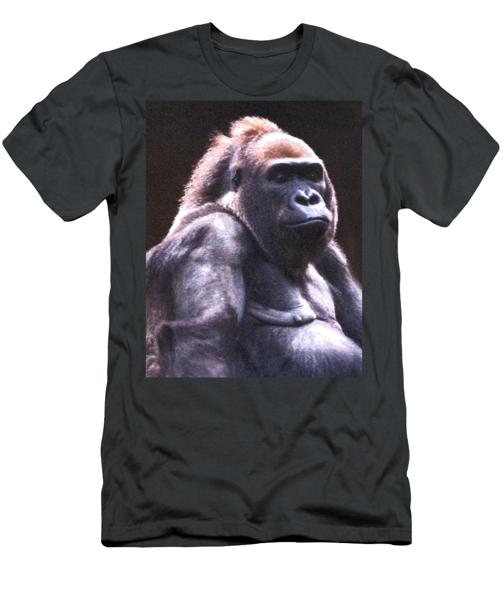 Gorilla Men's T-Shirt (Athletic Fit) featuring the photograph Gorilla by Steve Karol