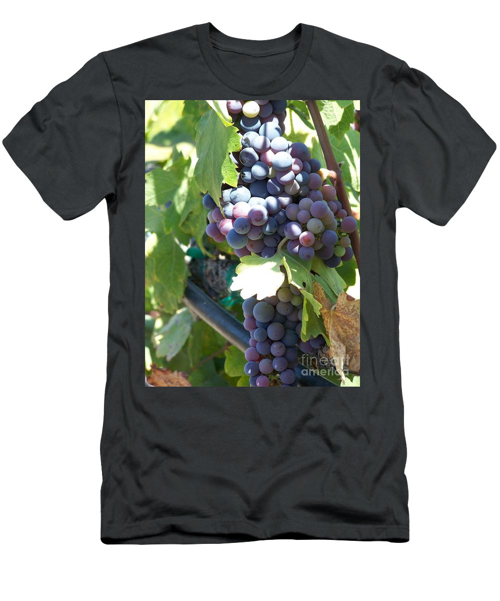 Grapes Men's T-Shirt (Athletic Fit) featuring the photograph Grapevine by Pamela Walrath