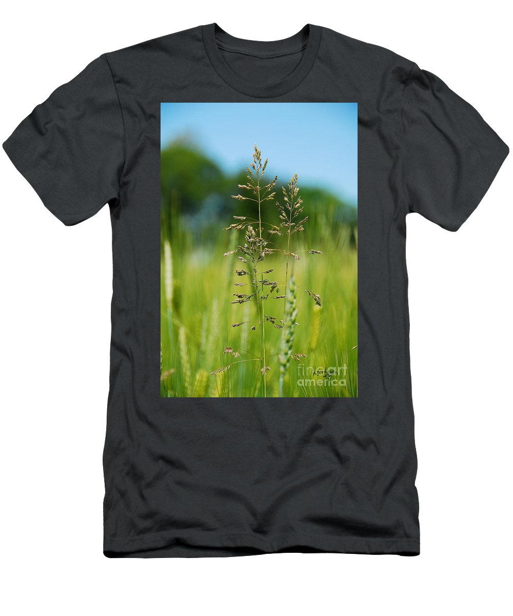 Botanical Men's T-Shirt (Athletic Fit) featuring the photograph Grass by Lois Bryan