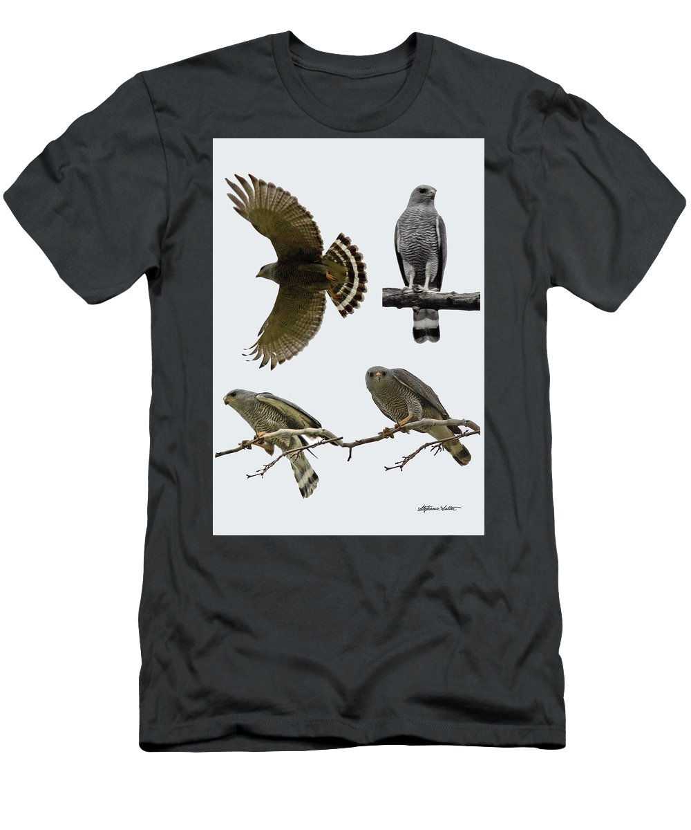 Nature Men's T-Shirt (Athletic Fit) featuring the photograph Gray Hawk Collage by Stephanie Salter