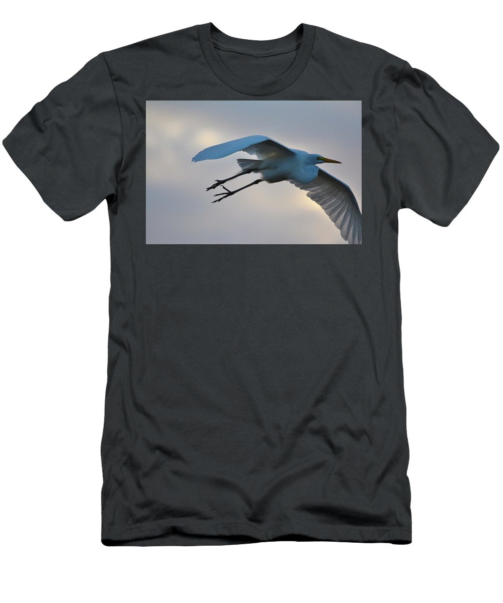 Flying Bird Men's T-Shirt (Athletic Fit) featuring the photograph Great Egret Soaring Gracefully by Patricia Twardzik