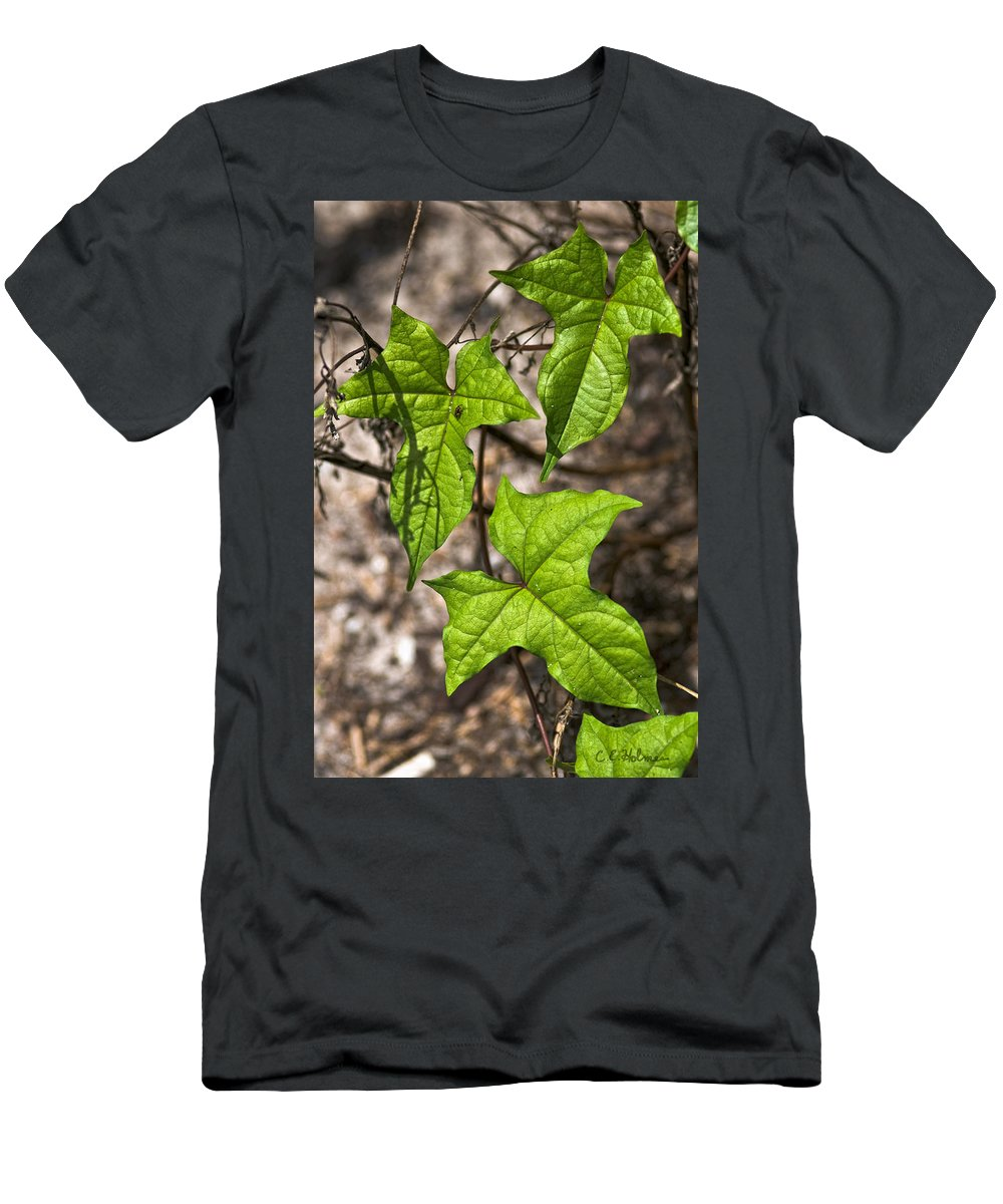Green Men's T-Shirt (Athletic Fit) featuring the photograph Green Arrowheads by Christopher Holmes