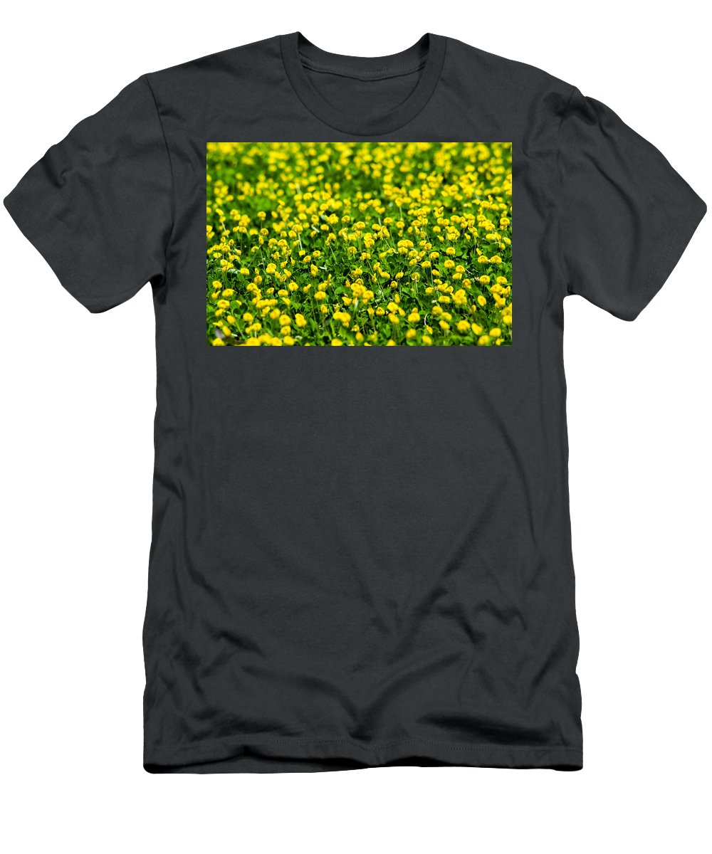 Field Men's T-Shirt (Athletic Fit) featuring the photograph Green Field Of Yellow Flowers 2 1 by Totto Ponce