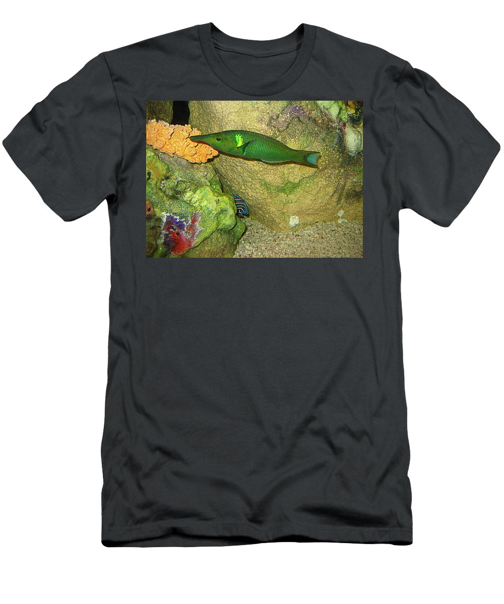 Fish Men's T-Shirt (Athletic Fit) featuring the photograph Green Fish by Denise Keegan Frawley