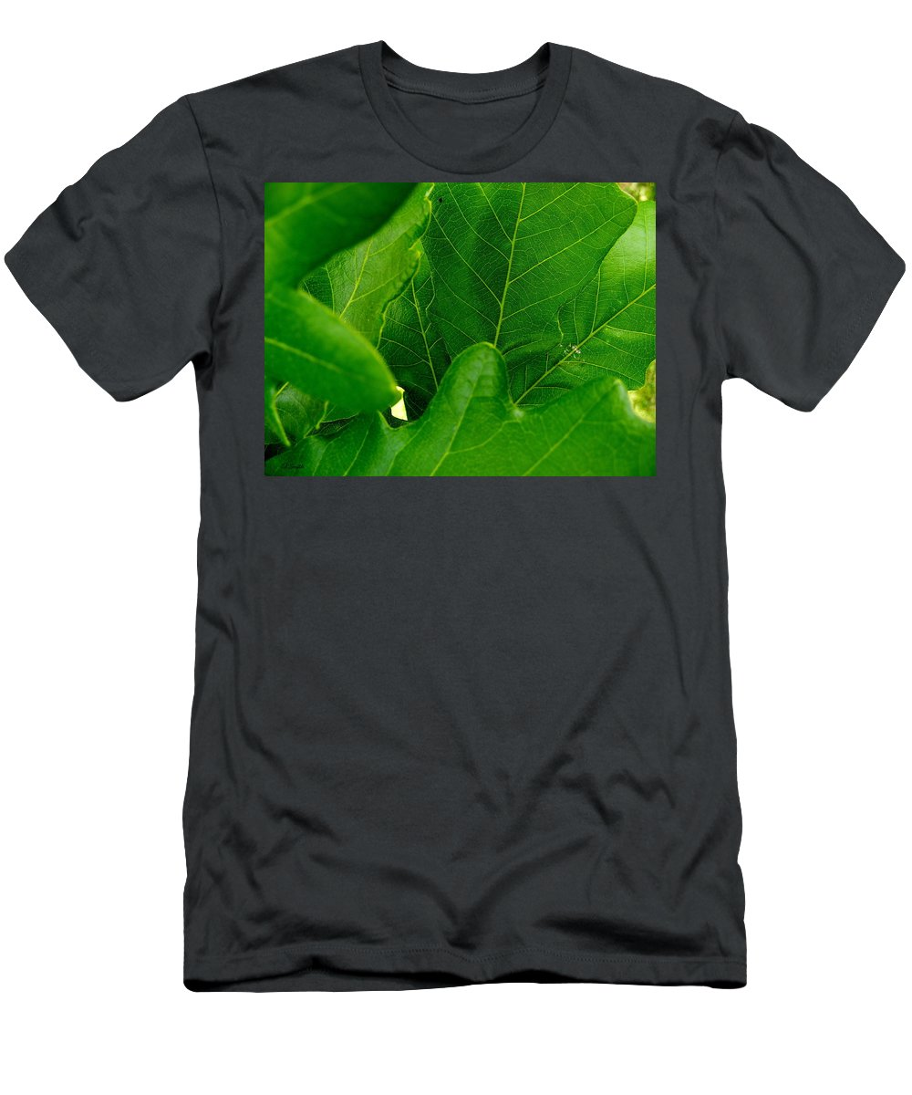 Group Therapy Men's T-Shirt (Athletic Fit) featuring the photograph Group Therapy by Edward Smith