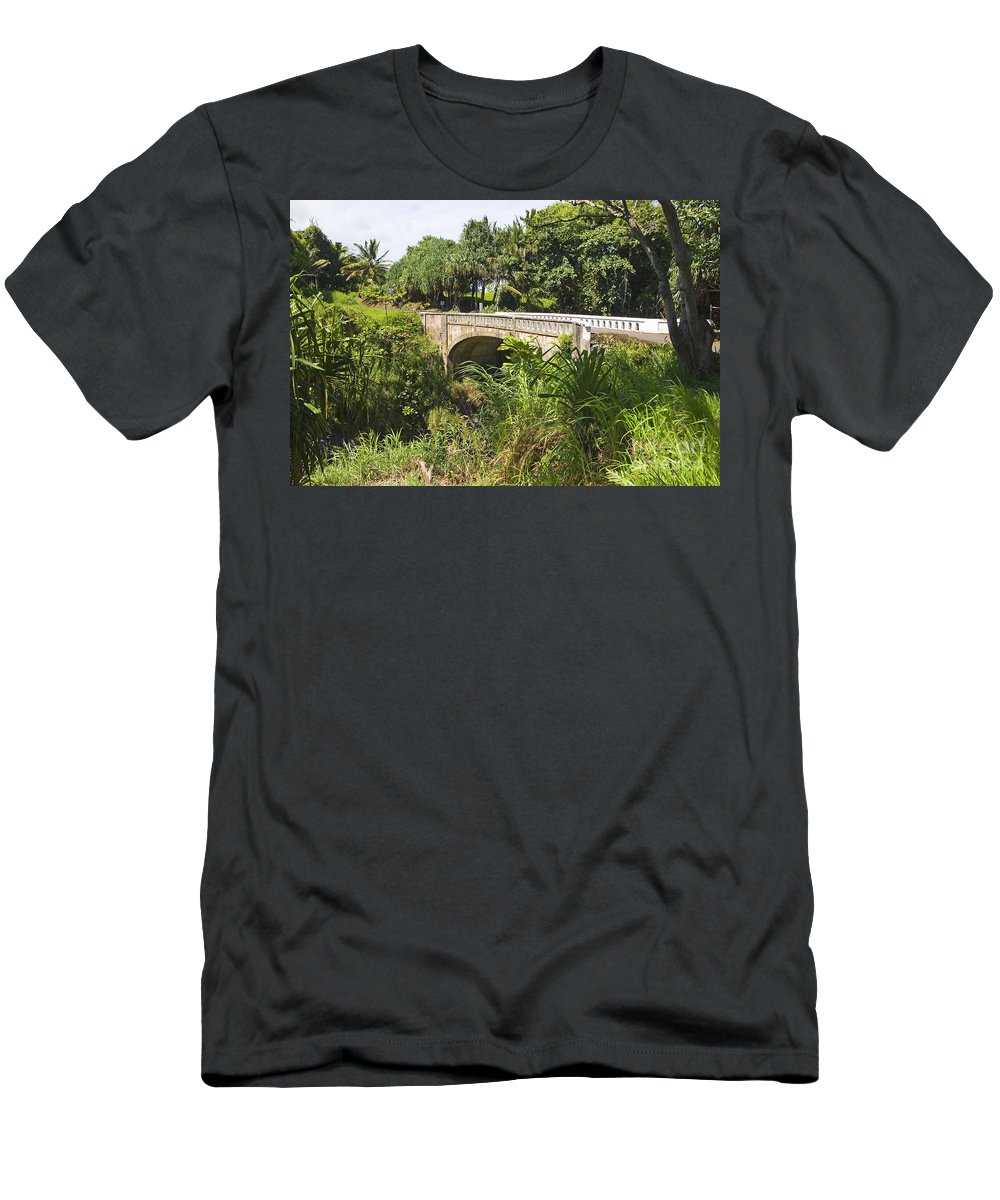 Afternoon Men's T-Shirt (Athletic Fit) featuring the photograph Hana, Kipahulu by Ron Dahlquist - Printscapes