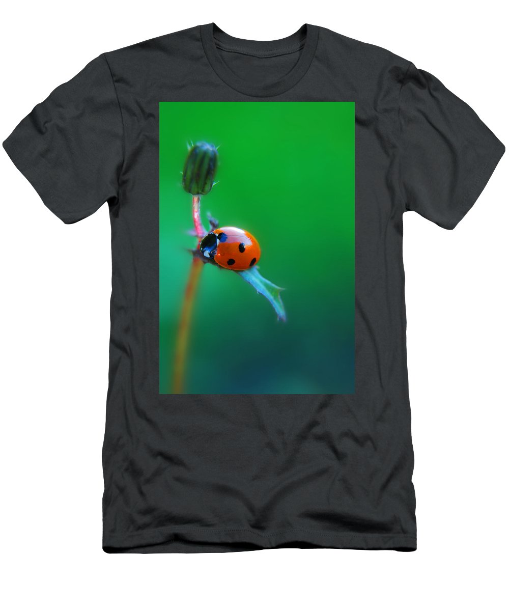 Yhun Suarez T-Shirt featuring the photograph Hang by Yhun Suarez