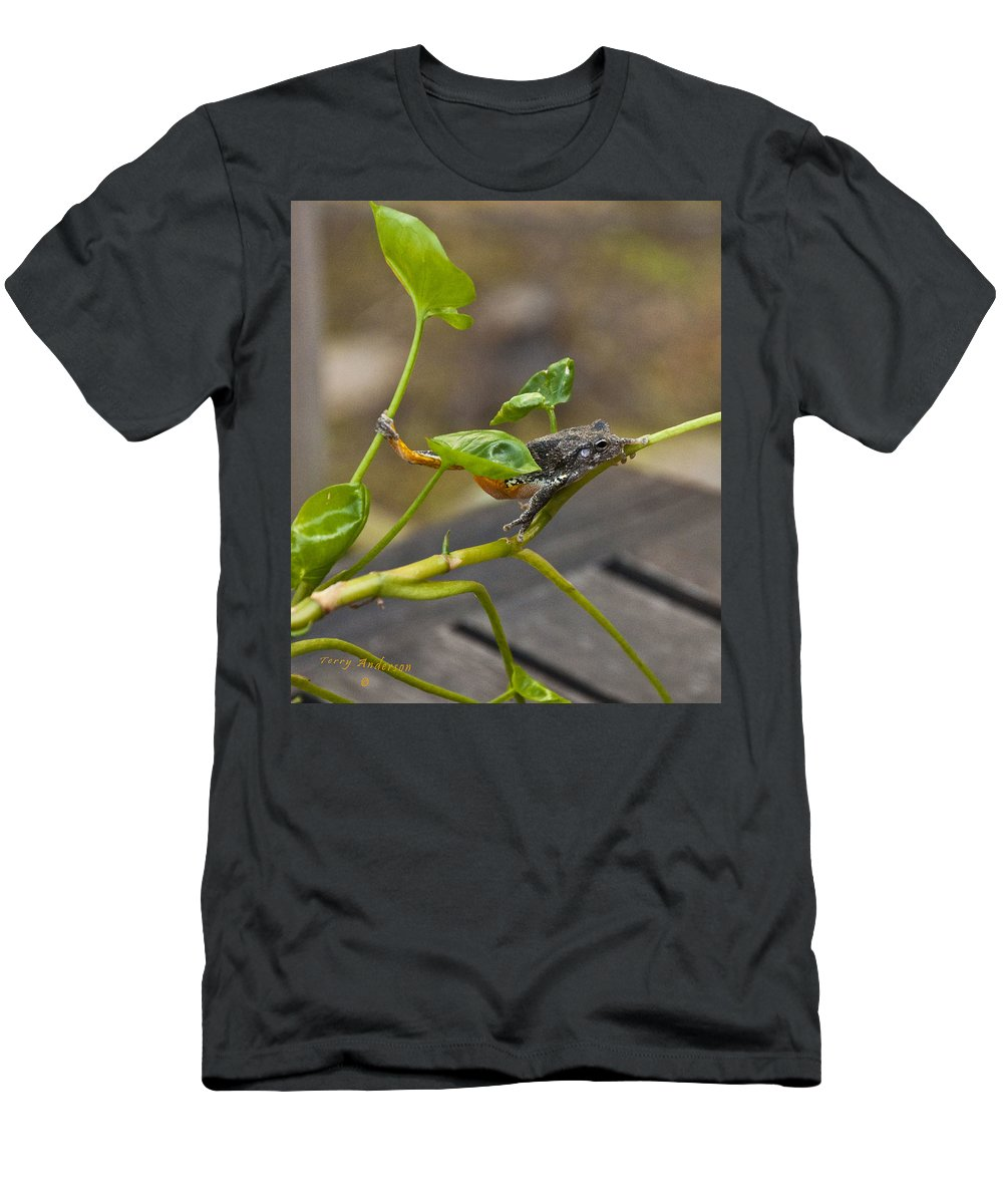 Hangin' Out Men's T-Shirt (Athletic Fit) featuring the photograph Hangin' Out by Terry Anderson