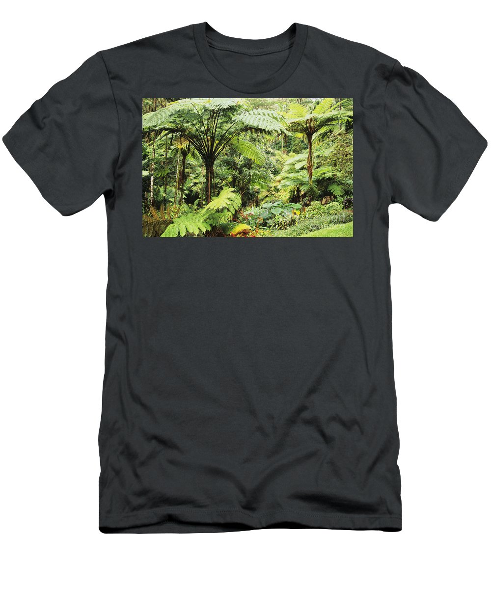 Beautiful Men's T-Shirt (Athletic Fit) featuring the photograph Hawaii Tropical Rainfores by Dana Edmunds - Printscapes