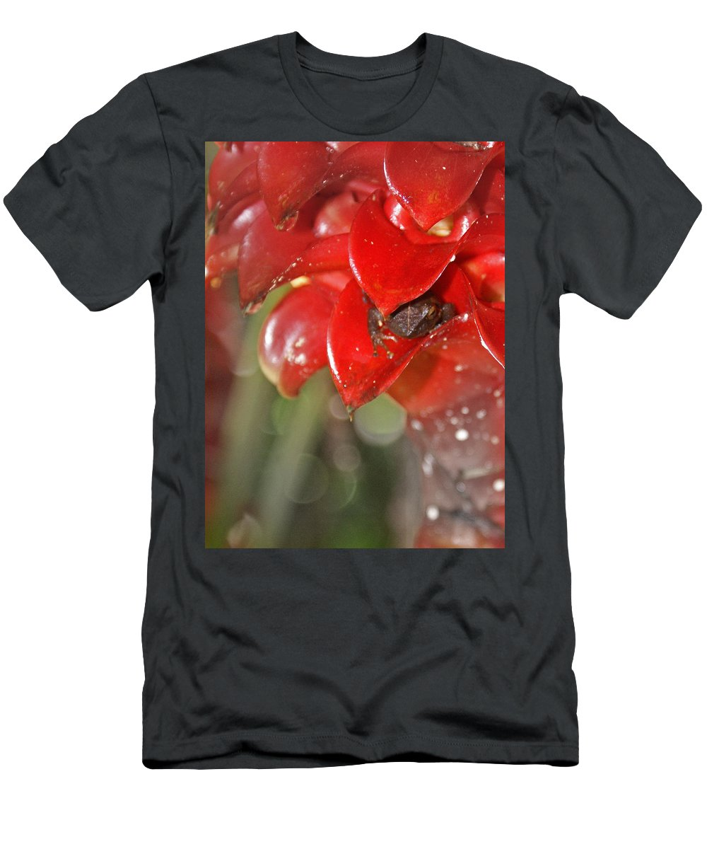 Frog Men's T-Shirt (Athletic Fit) featuring the digital art Hawaiian Frog by Heather Coen