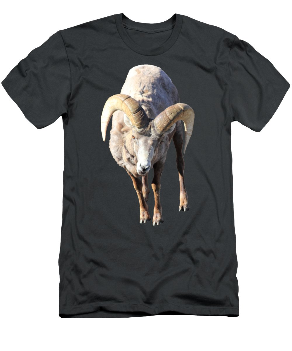 Ram Men's T-Shirt (Athletic Fit) featuring the photograph Head-on by Shane Bechler