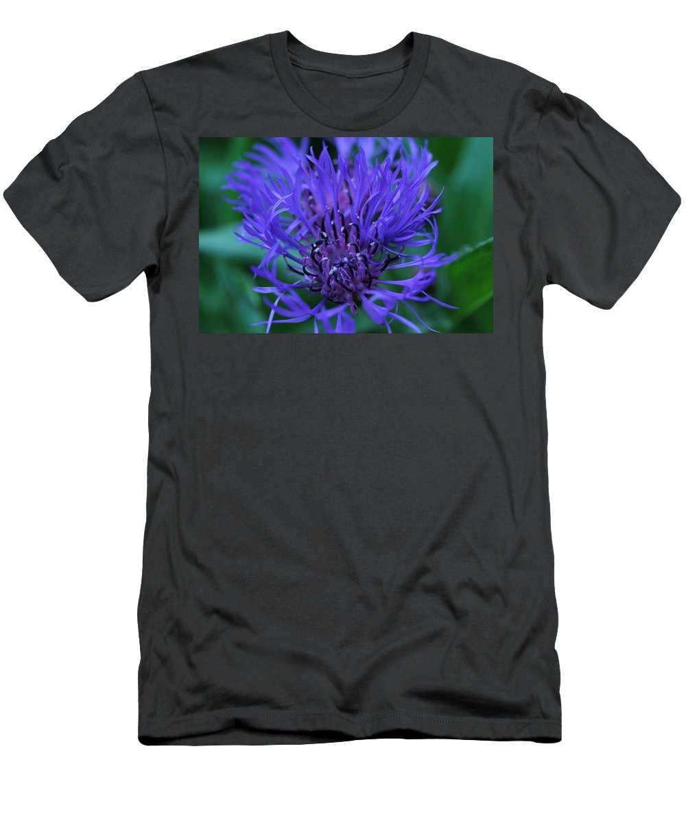 Bluet Men's T-Shirt (Athletic Fit) featuring the photograph Here's Looking At Bluet by David Lyon
