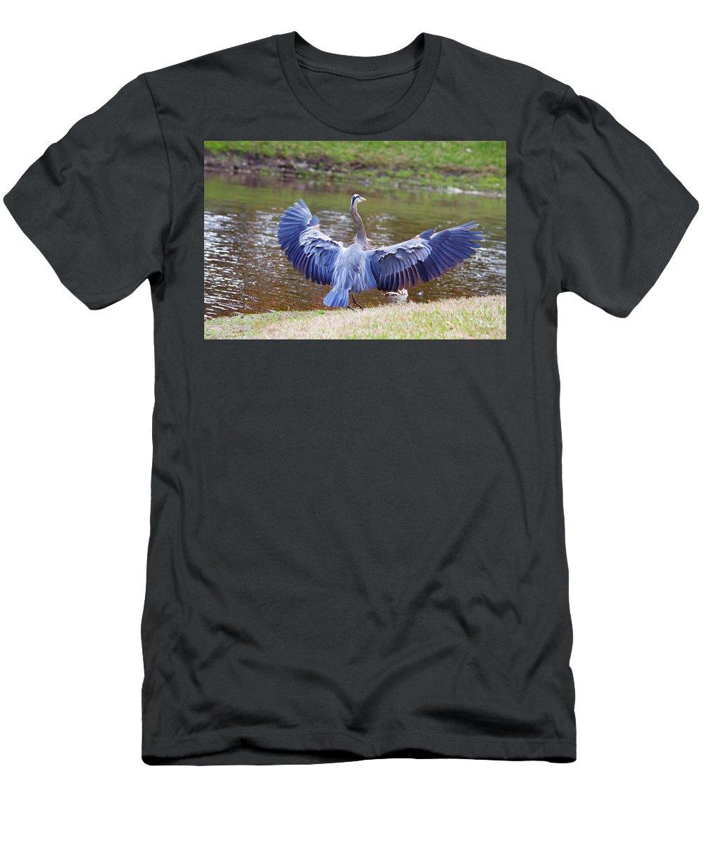 Blue Heron Men's T-Shirt (Athletic Fit) featuring the photograph Heron Bank Landing by Deborah Benoit